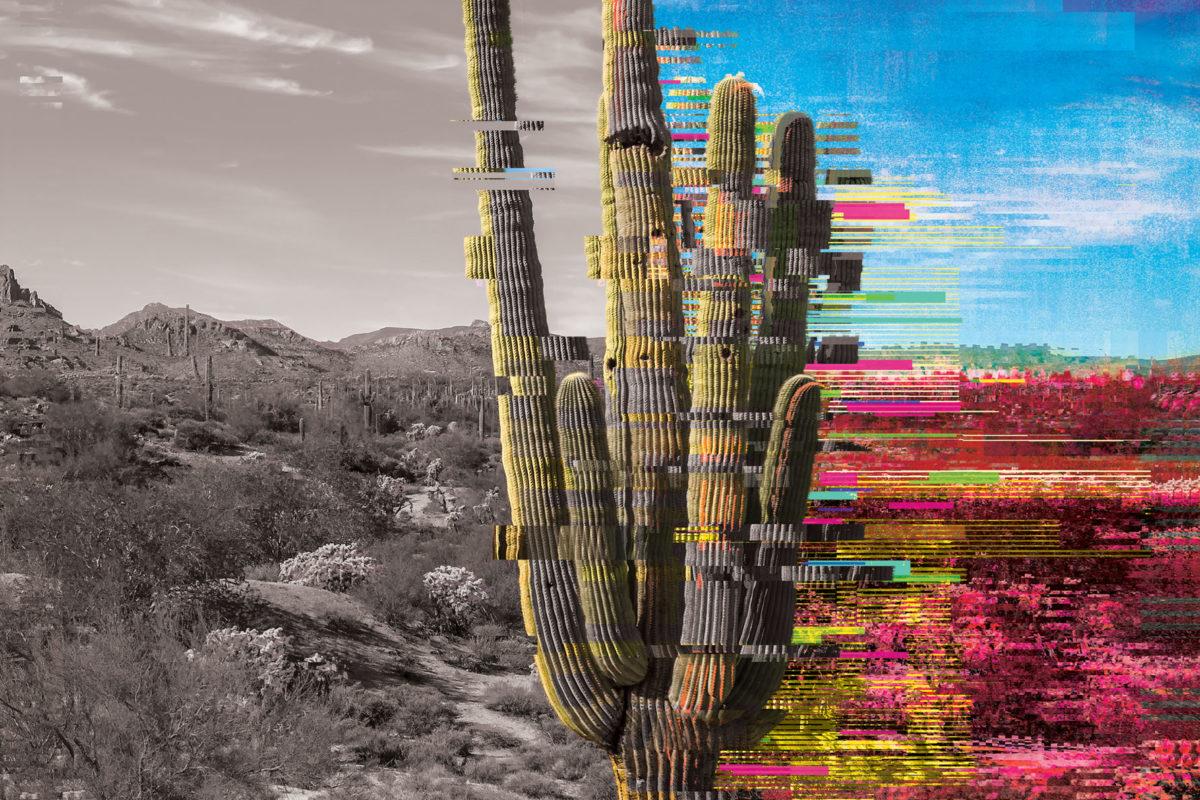 Arizona Desert Glitch - ASU Disrupt