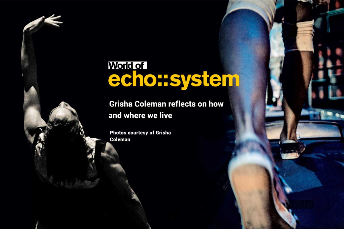 World of echo::system text with photo of Grisha Coleman